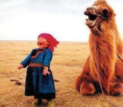 camel-and-child-laughing
