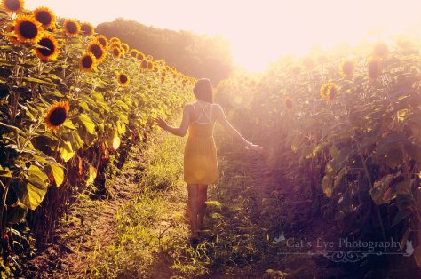 walk_through_sun_beams_by_catseyephotography-d6dg9jr