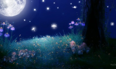 twilight-of-the-moon-bright-flowers-full-moon-glow-grass-light-sky-stars-768x1280